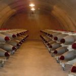mozione m5s rispetto trattato non proliferazione armi nucleari